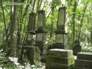 1458-Cmentarz-zydowski